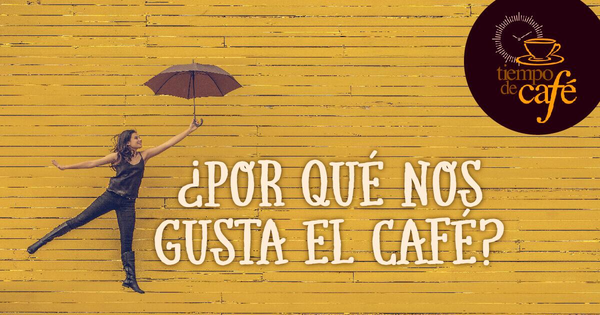 Características Café Il Cafinito