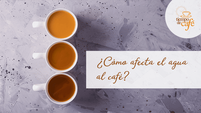 ¿Cómo afecta el agua a la calidad del café?